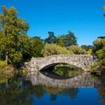 Old Stone Bridge 057 — Stock Photo #33505245