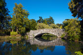 Old Stone Bridge 057 — Stock Photo
