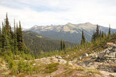 Mount Revelstoke View — 图库照片