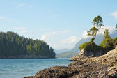 Tofino Seascape — Stock Photo