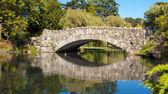 Old Stone Bridge 3 — Stock Photo