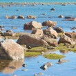 Hudson Bay Low Tide Stone Desert — Photo