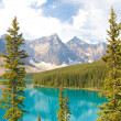 Stock Photo: Moraine Lake vertical view