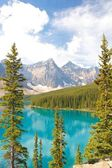 Moraine Lake vertical view — ストック写真