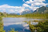 Vermillion Lakes between bushes — Stock Photo