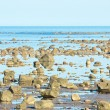 Hudson Bay Low Tide Stone Desert — Stockfoto