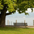 Bench at the lake 2 — Stock Photo