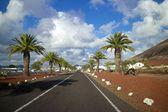 Lanzarote Road 1 — Stockfoto