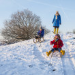 Family sledging — Stock Photo