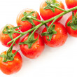 Stock Photo: Vine ripened plum tomatoes
