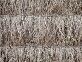 Detail of brushwood fence — Stock Photo