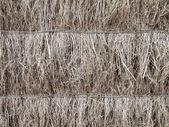 Detail of brushwood fence — Stock Photo