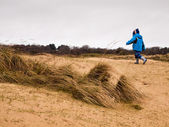 Small boy walking in the dunes — Stock Photo