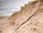 Storm Damaged Dune — Stock Photo