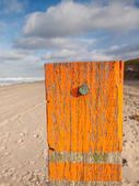 Beach post with sea level marker with beach behind — Stock Photo