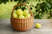 Homegrown apples — Stock Photo
