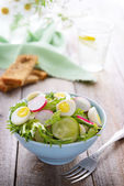 Salad with radish — Stock Photo