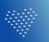 White Swans flying or Geese flying or Crane Flying in the shape of heart against a blue sky background — Stock Photo