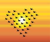 Siluetas negras de cisnes volando o gansos volando o grulla volando en forma de corazón contra un cielo de la noche o mañana y sol en el fondo — Foto de Stock
