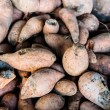Royalty-Free Stock Photo: Sweet potato