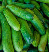 The cucumbers — Stock Photo