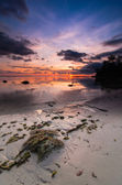 Tips of borneo sunset with stone vertical view — Stock Photo