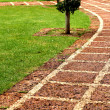 Stone pathway. — Stock Photo