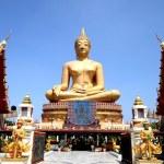 Buddha statue — Stock Photo #46724879
