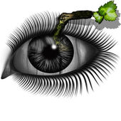 The eye with a twig — Stock Photo