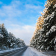 Road in winter forest — Stock Photo