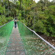 Hanging bridge — Stock Photo