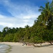 Manuel Antonio — Stock Photo #36462233