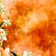 Floral background with lilies - Stock Photo