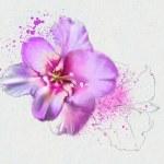 Beautiful flowers — Stock Photo #33254745