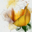 Yellow rose sketch — Stock Photo