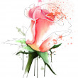 Stock Photo: Pink rose sketch