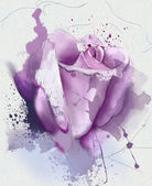 Purple rose sketch — Stock Photo