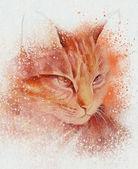 Brown cat sketch — Stock Photo
