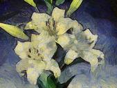 Bílá lilie ilustrace — Stock fotografie