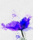 Beautiful blue anemone sketch — Stock Photo