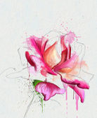 Violet rose sketch — Stock Photo