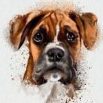 Cute Dog — Stock Photo #38830077