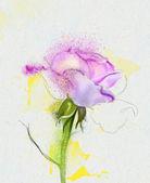 美丽的花 — 图库照片