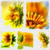 Sunflower, watercolor — Stock Photo