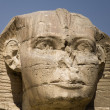 Sphinx of Giza — Stockfoto #17825353