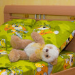 Toy teddy bear in the bed  — Stock fotografie