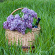 Stock Photo: Basket with lilacs and bottle of wine