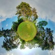 Little planet - Globe at summer time - 360 degrees panorama — Stock Photo