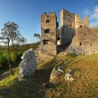 Ruin of Castle Hrusov — Stock Photo #18280947