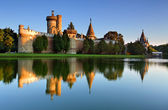 Laxenburg Water Castle, Lower Austria — Stok fotoğraf